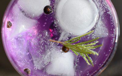 Gin – nicht ohne mein Tonic!