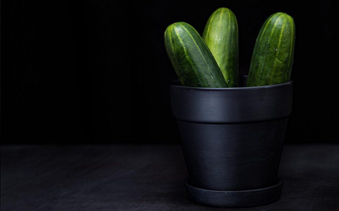 Kühlendes für die Hitzewelle 1 – Wassermelonen + Gurken